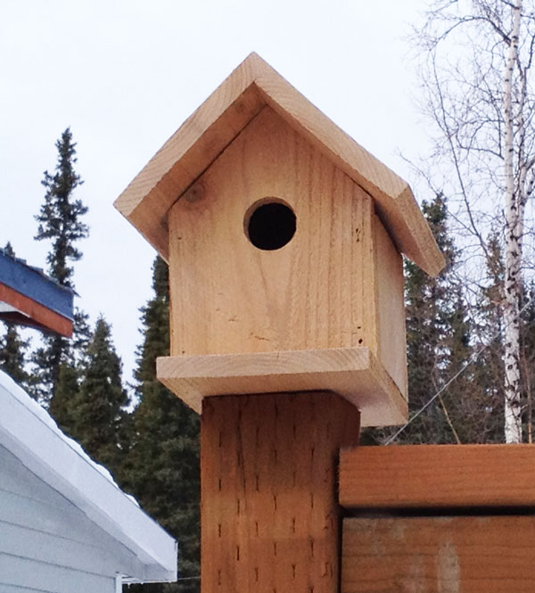 australian bird box designs easy woodworking fun On simple birdhouses